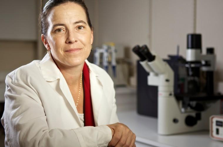 Rebuttal to CHOP re: Fetal Cells